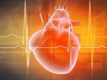 Medical heart scan